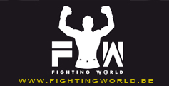 Fightingworld